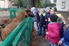zoo021710